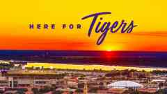 20 Taf Herefortigers Header